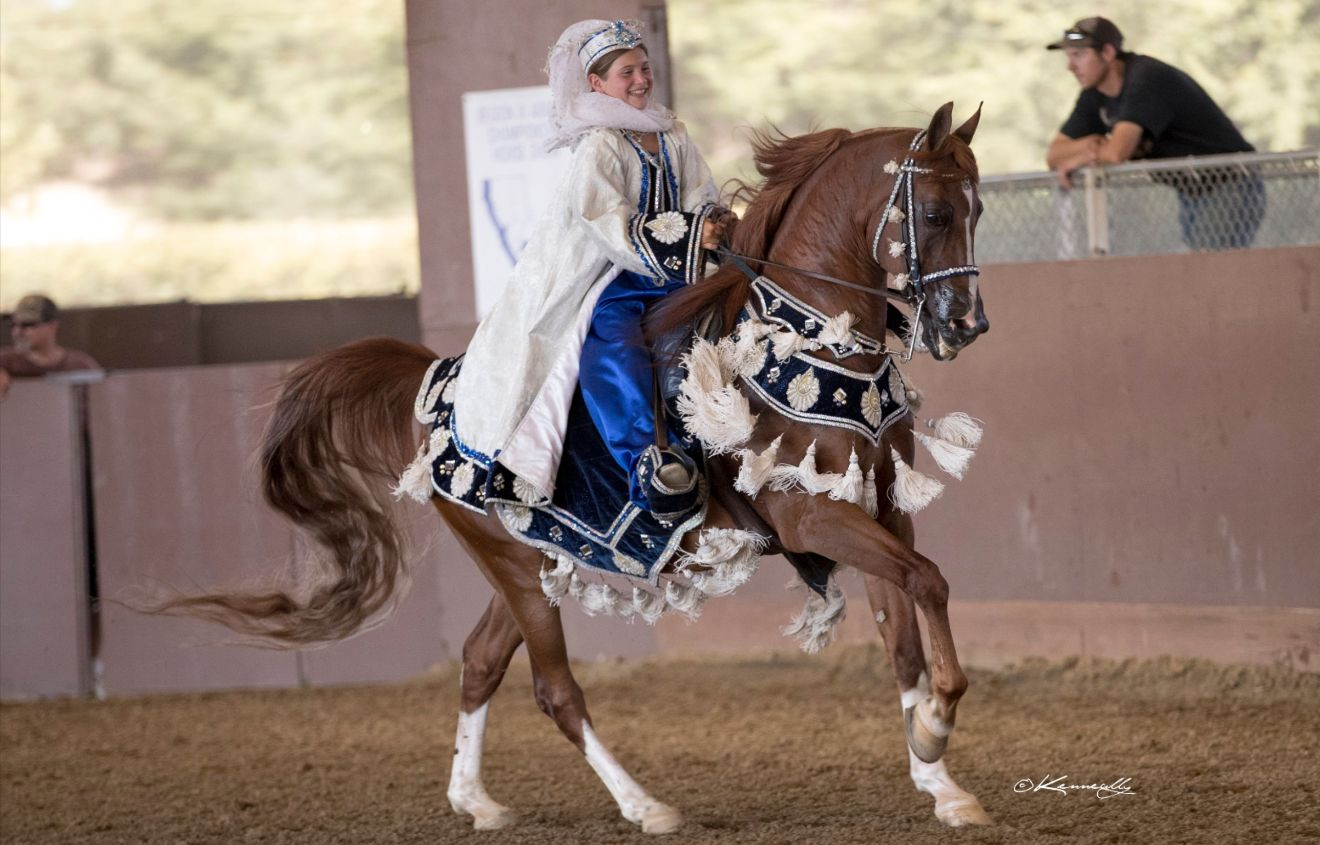 Region 3 Championship and Last Chance Arabian Horse Shows -  CANCELED