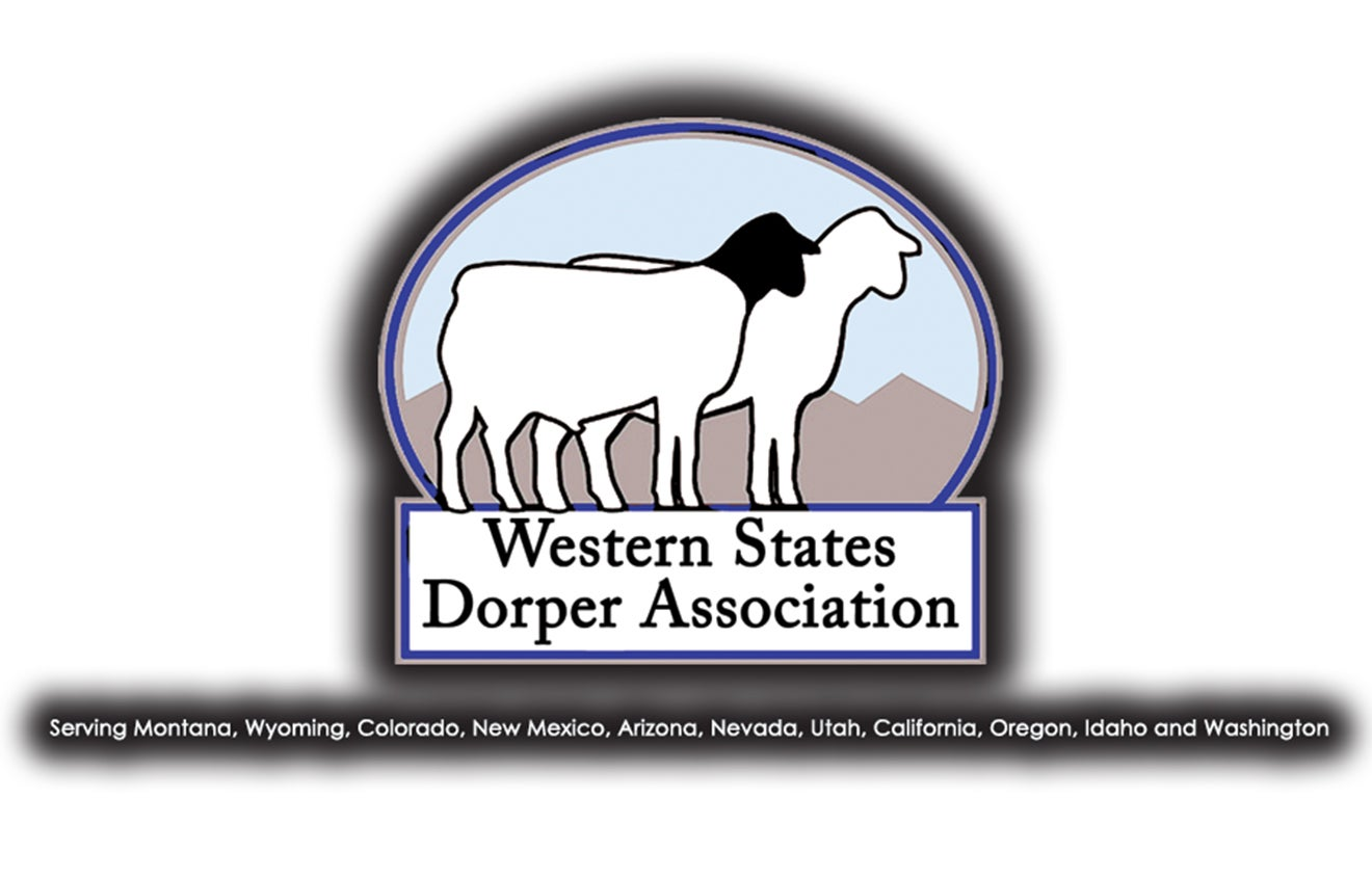 More Info for Western States Dorper Show & Sale - RESCHEDULED